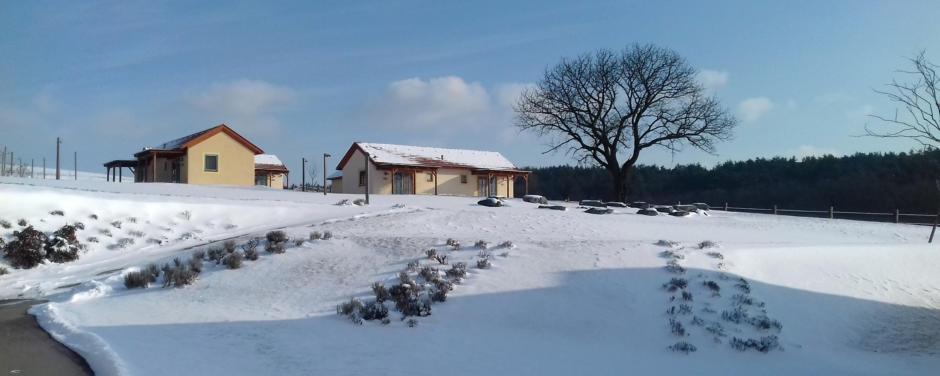 Sie sehen die Aussenansicht eines Sommerhäuschens im JUFA Hotel Neutal Landerlebnis im Winter. JUFA Hotels bietet erholsamen Familienurlaub und einen unvergesslichen Winterurlaub.