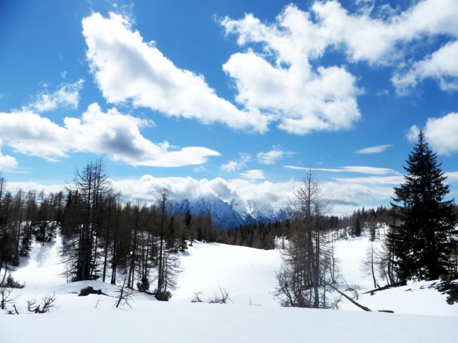 Stimmungsbild von der verschneiten Tauplitzalm im Winter. JUFA Hotels bietet erholsamen Familienurlaub und einen unvergesslichen Winterurlaub.