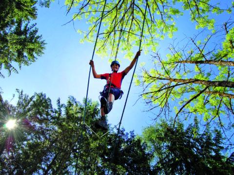 Kletterer im Waldhochseilgarten am Gleinkersee in der Nähe vom JUFA Hotel Pyhrn-Priel. JUFA Hotels bietet kinderfreundlichen und erlebnisreichen Urlaub für die ganze Familie.