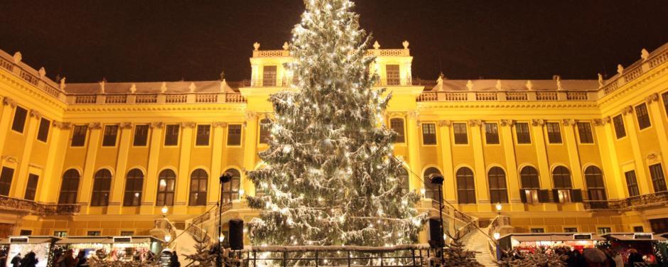 Weihnachtsmarkt Schloss Schönbrunn mit Christbaum. JUFA Hotels bietet erholsamen Familienurlaub und einen unvergesslichen Winterurlaub.