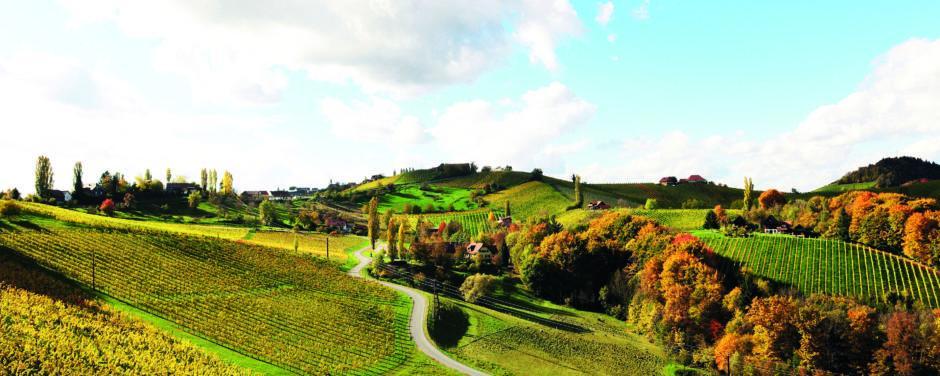 Sie sehen Farbenspiel im Weinland mit Weinbergen in der Steiermark im Herbst. JUFA Hotels bietet Ihnen den Ort für erlebnisreichen Natururlaub für die ganze Familie.
